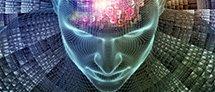 מפגש היכרות עם המוח האנושי ומה שצופן לנו העתיד בתחום