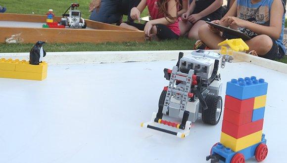 כולם יכולים להיות מאלפי רובוטים