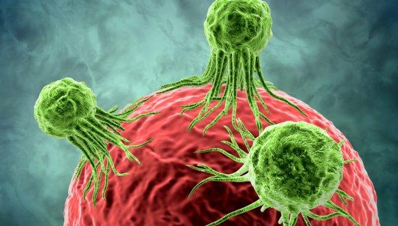 גוף בריא ומיקרו-סביבה תקינה: האויבים הגדולים ביותר של הסרטן  الجسم السليم والبيئة الخلوية الصحيحة: أكبر أعداء السرطان