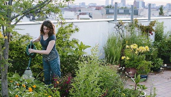 """עתיד ירוק: הרצאות מפי חוקרי ביה""""ס ללימודי הסביבה ע""""ש פורטר"""